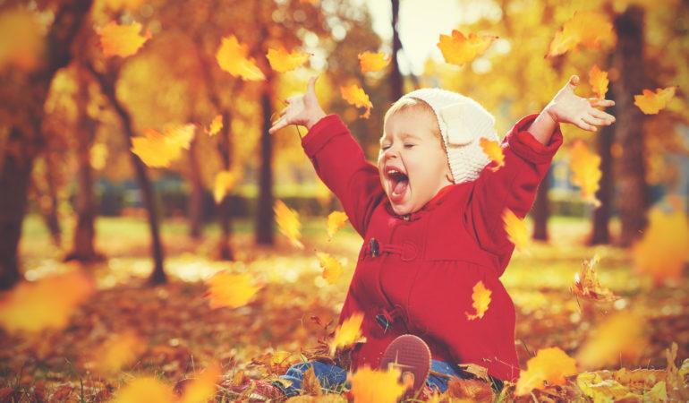 Jesienny liściasty dywan